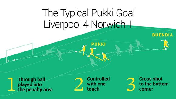 Pukki Graphic 1