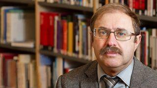 Владимир Гельман, профессор, Александровский институт