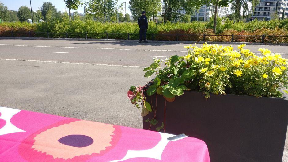finlandia talo mansikat poliisi