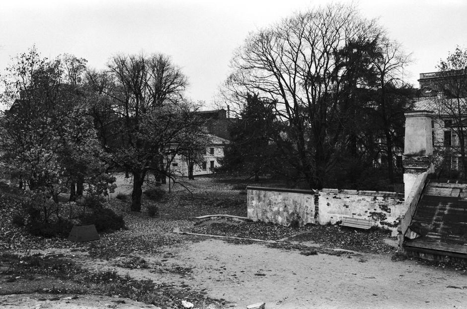 Парк Синебрюхова в разрухе, 1950-е годы