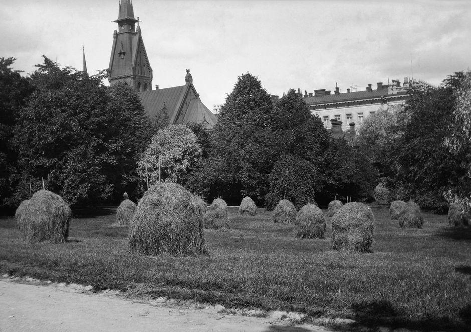 Еще какие-то сто лет назад в ныне фешенебельной Эйре сушили сено на расстоянии вытянутой руки от нарядных вилл