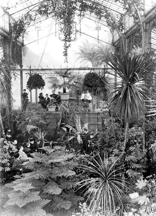 Зимний сад, конец 19-го века