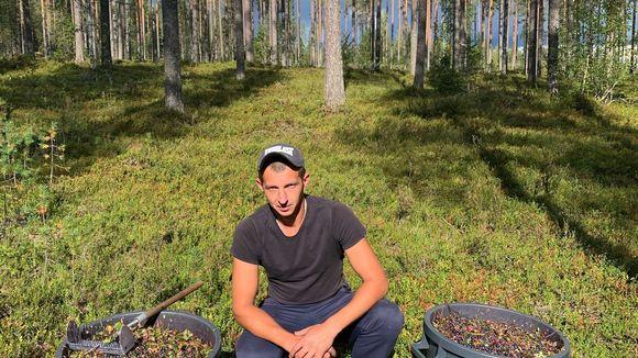 Jevgeni Tinkov, ukrainalaiset marjanpoimijat