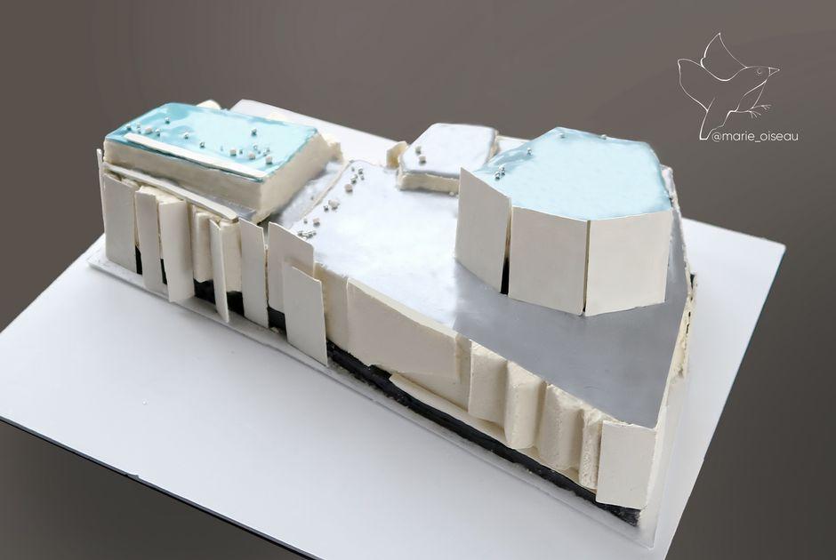 finlandia talo kakku 1