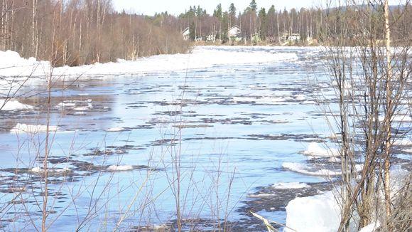 Jietna: Avviljohka, Ivalojoki