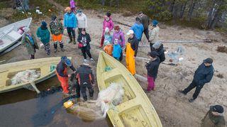Nuottaverkon veto Sevettijärvellä kesäkuussa 2018