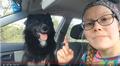 Jietna: Martta Alajärvi pennuinis tube-videost