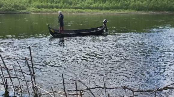 Video: Rauna Guttorm kokemassa lohipatoa