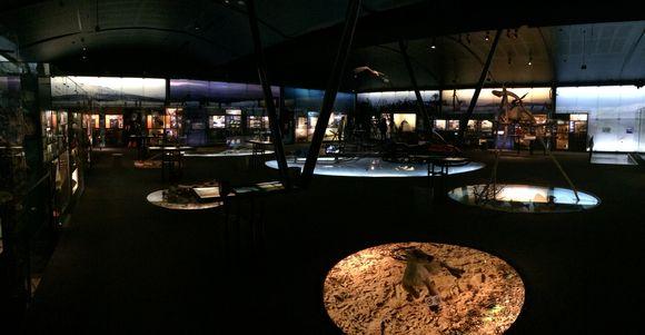 Sámimusea Siidda váldočájáhus.