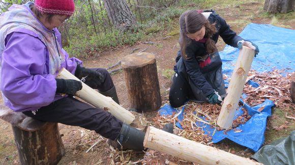 Elina Vuoti, Natalia Magnani, Keväjärvi, pettu, puun kuoriminen