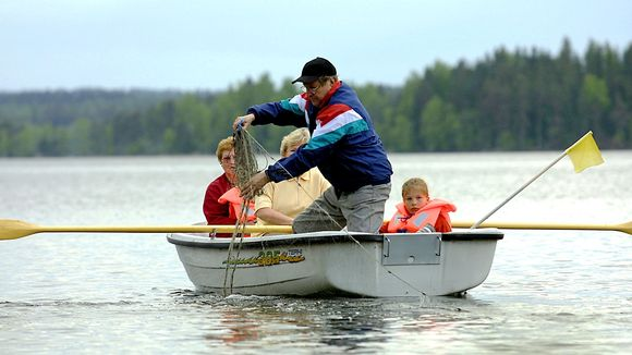 Mies soutuveneessä nostamassa verkkoja. Veneessä istuvat myös kaksi naista ja lapsi.