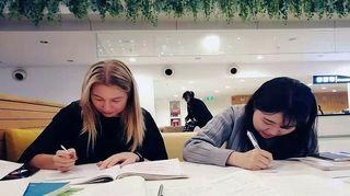 Kaksi nuorta opiskelee oppikirjat edessään.