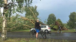 Video: Myrskytuhoja Oulussa