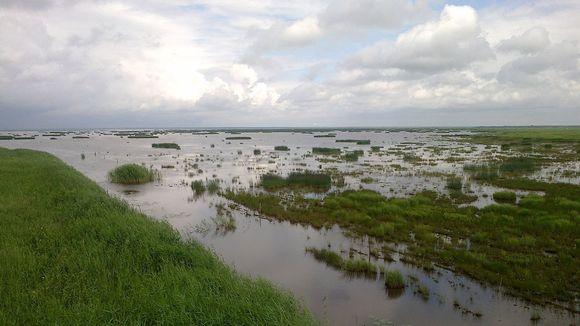 Liminganlahti on Perämeren maannousema rannikkoa.