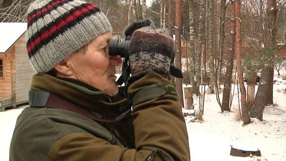 Lintuharrastaja Kari Mäntylä tiirailee kiikareilla