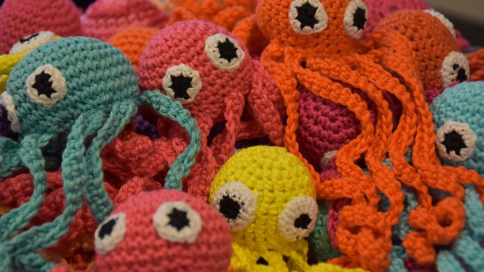 Crochet Octopuses To The Rescue Preemies And Dementia