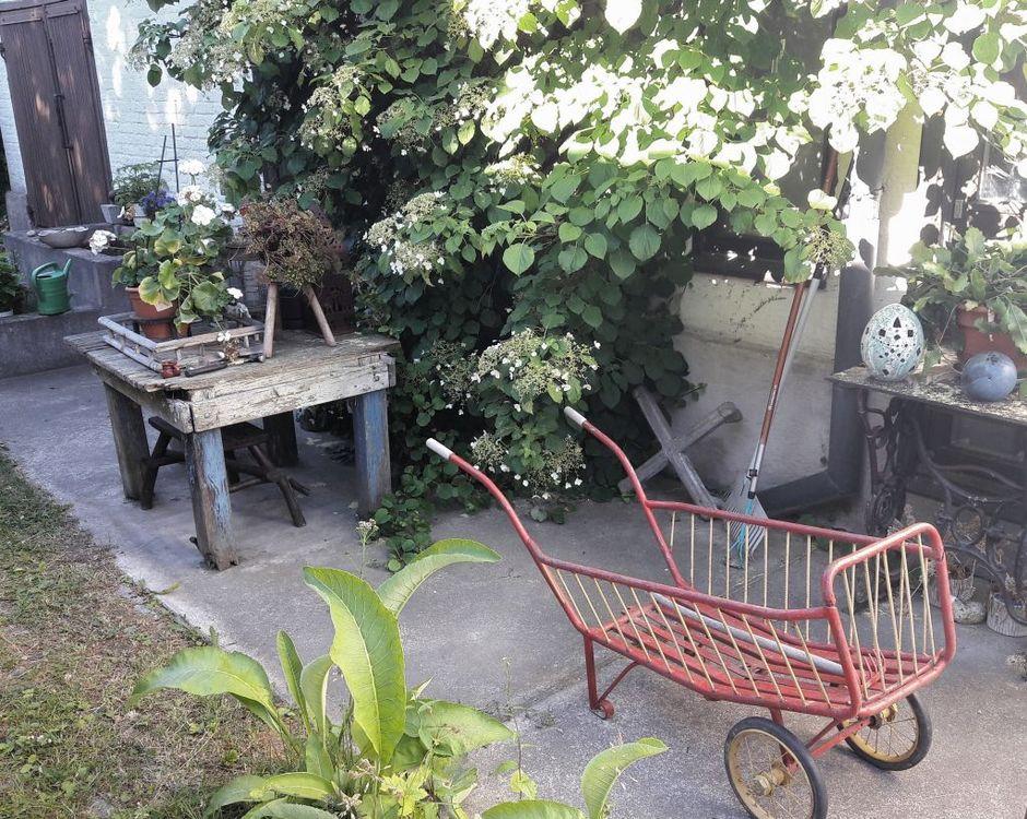 Vanha Rauma puutarha