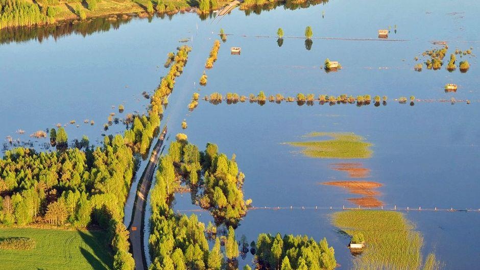 Tulviva Tornionjoki