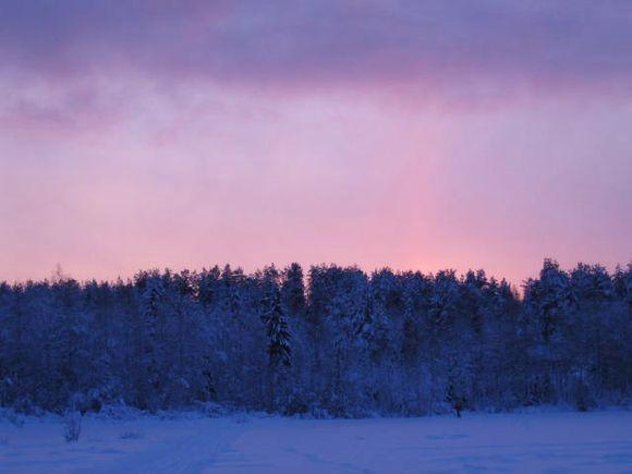 Salmijärven luontoa