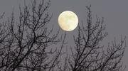 Iltahämärän laskeutuessa loisti kaukana taivaan korkeuksissa vaaleankeltainen kuu. On täysikuun aika.