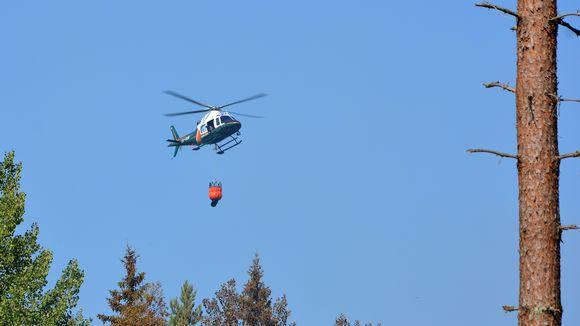 Helikopteri sammuttaa metsäpaloa