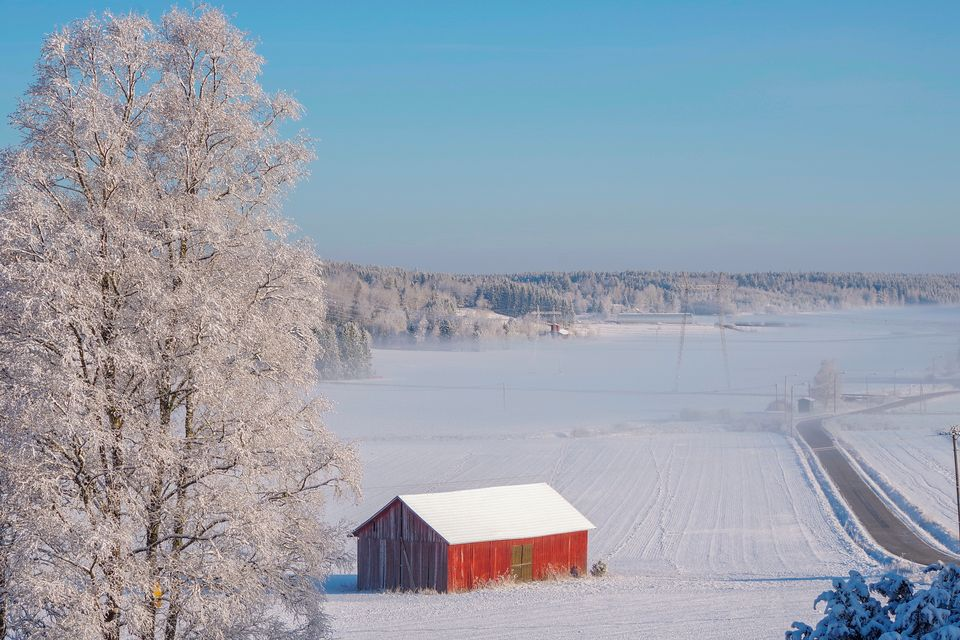 Finland endures coldest May in nearly half a century | Yle Uutiset | yle.fi