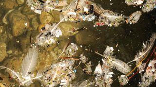 Mikromuovia ja roskaa rannalla.