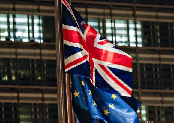 Liput liehuivat Brysselissä.