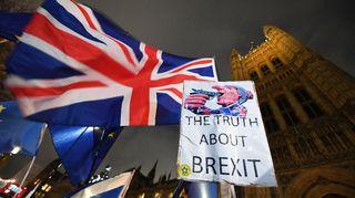 Mielenosoitus parlamentin edustalla Lontoossa.