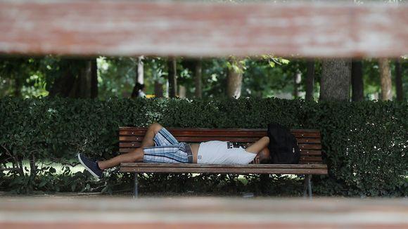 Mies makaa puistonpenkillä.