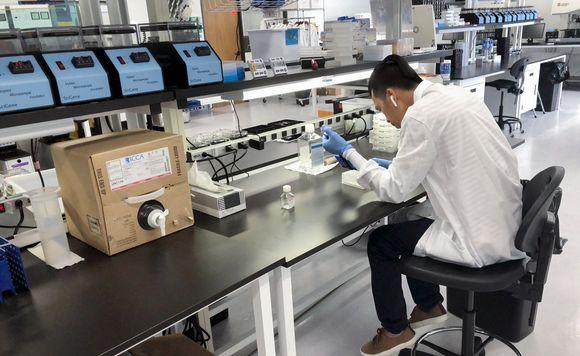 DNA-näytteitä tutkitaan.