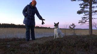 Video: Kirsi Ukkonen