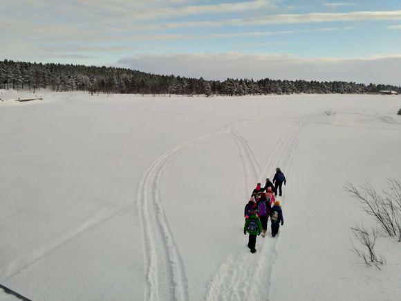 Video: Inarin koulun saamenluokat kävelevät yhdessä uusiin koulutiloihin joka päivä tänä keväänä.
