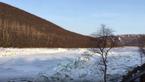 Jäät lähtivät Tenon Aittisuvannosta 25.4.2019