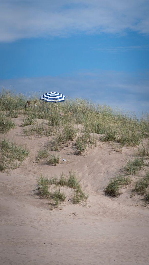 Aurinkovarjo Yyterin hiekkadyyneillä.