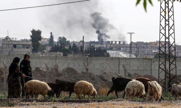 Naiset kaitsevat lampaita lähellä Teli Abiadin kaupunkia, Turkin rajalla Syyriassa. Kuva on otettu perjantaina 11. lokakuuta.