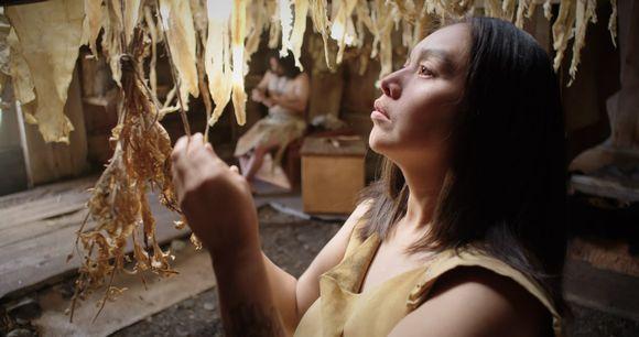 Skábmagovilla nähdään Gwaai Edenshawan ja Helen Haig-Brownin myyttinen Sgaawaay K'uuna