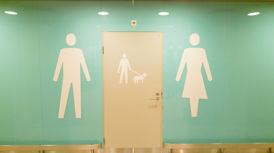 Miesten, koirien ja naisten vessat vierekkäin.