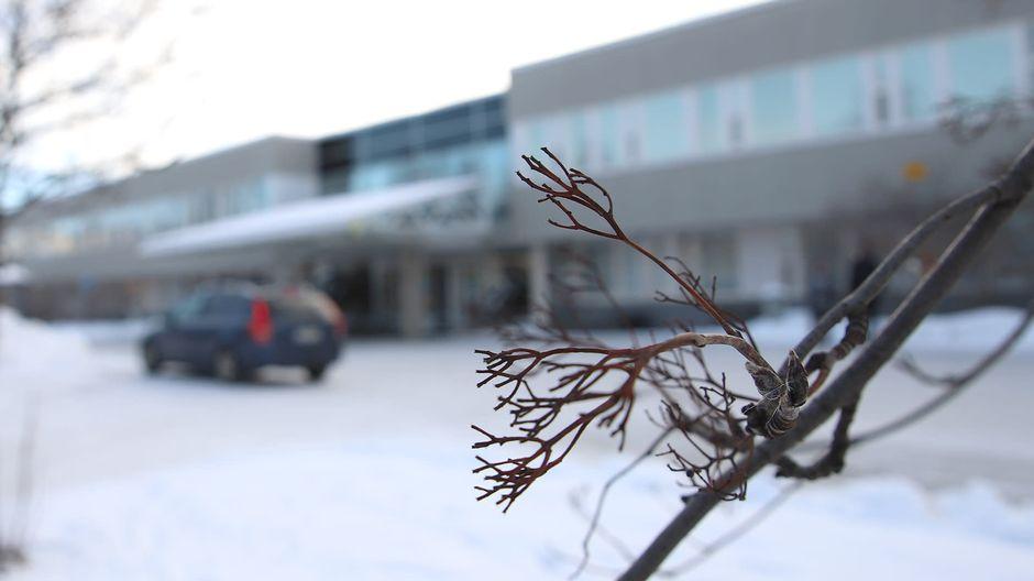 В Лапландии обнаружены первые случаи заражения коронавирусом из Швеции — специалисты предлагают закрыть границу