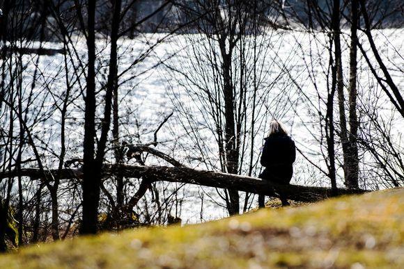 Kuvassa nainen istuu metsässä aurinkoisella säällä.