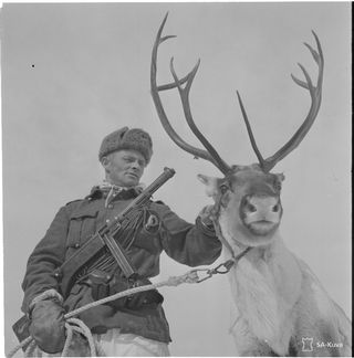Jouni Klemet Halonen poron kanssa jatkosodassa vuonna 1944.