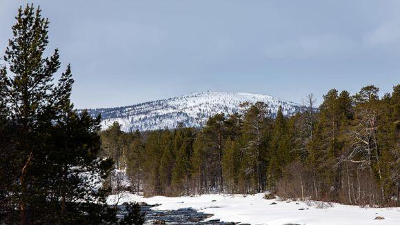 Inarissa on 15.5.2020 yhä lunta.