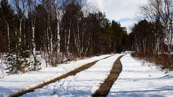Yöllä 15.5.2020 Inarissa satoi runsaasti lunta. Tämän verran uudesta lumesta oli päivällä jäljellä tien päällä.