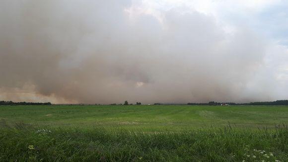 Metsäpalosta aiheutunutta savua peltomaisemassa Muhoksella.