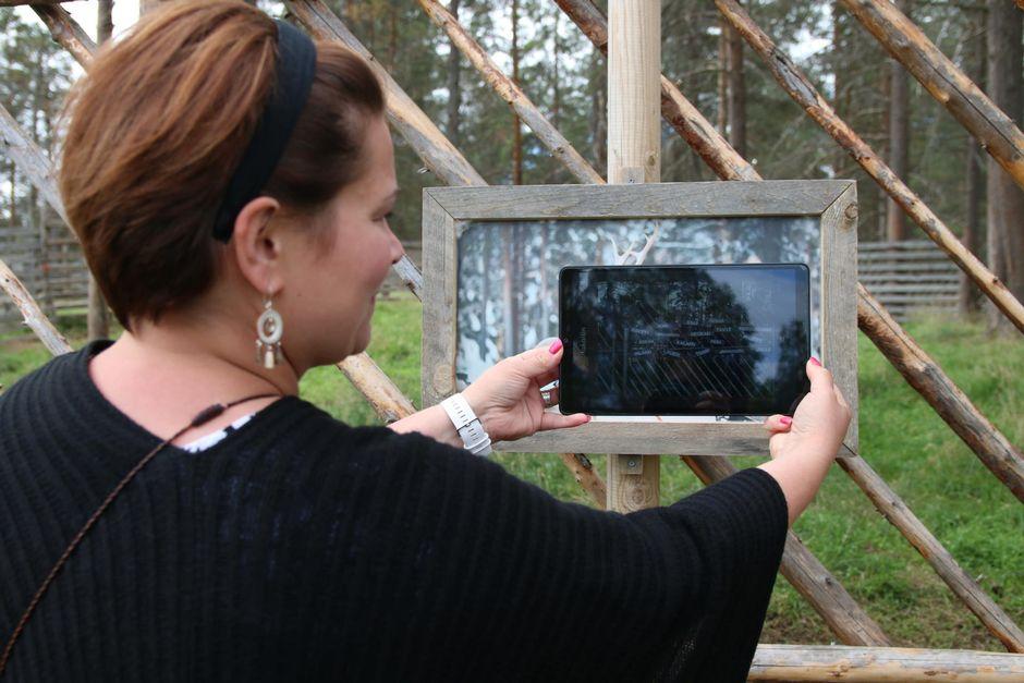 Yrittäjä Anu Magga näyttää tabletilla, miten tilan mobiiliopas toimii