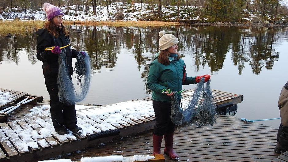Video: kalastus