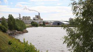Kuvassa näkyy etualalla merta ja puita, taustalla on Veitsiluodon tehdas savupiippuineen.