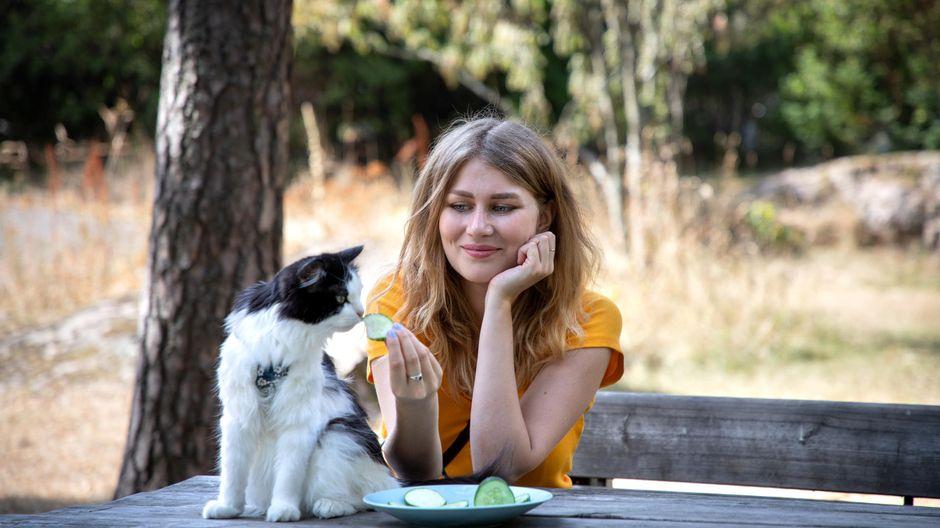 Heli Montonen syöttää Mauri-kissalle kurkkua puutarhassa.